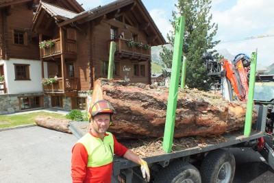 Livigno wood'n'art 2015 (2)