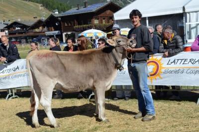 livigno mostra zootecnica 2015 vincitori (3)