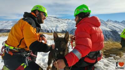 livigno esercitazione cani da valanga (2)