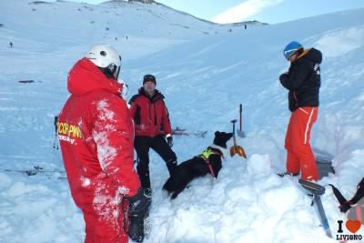 livigno esercitazione cani da valanga (5)