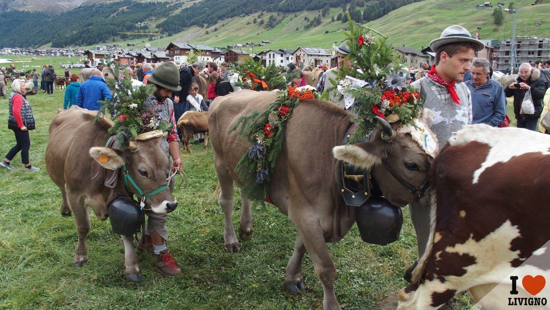livigno-alpen-fest-2016-6